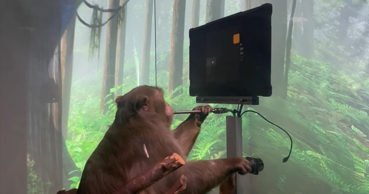 "Headline Patrol: ""Monkey MindPong: Elon Musk & Neuralink's Latest Could Potentially Revolutionize Healthcare."""