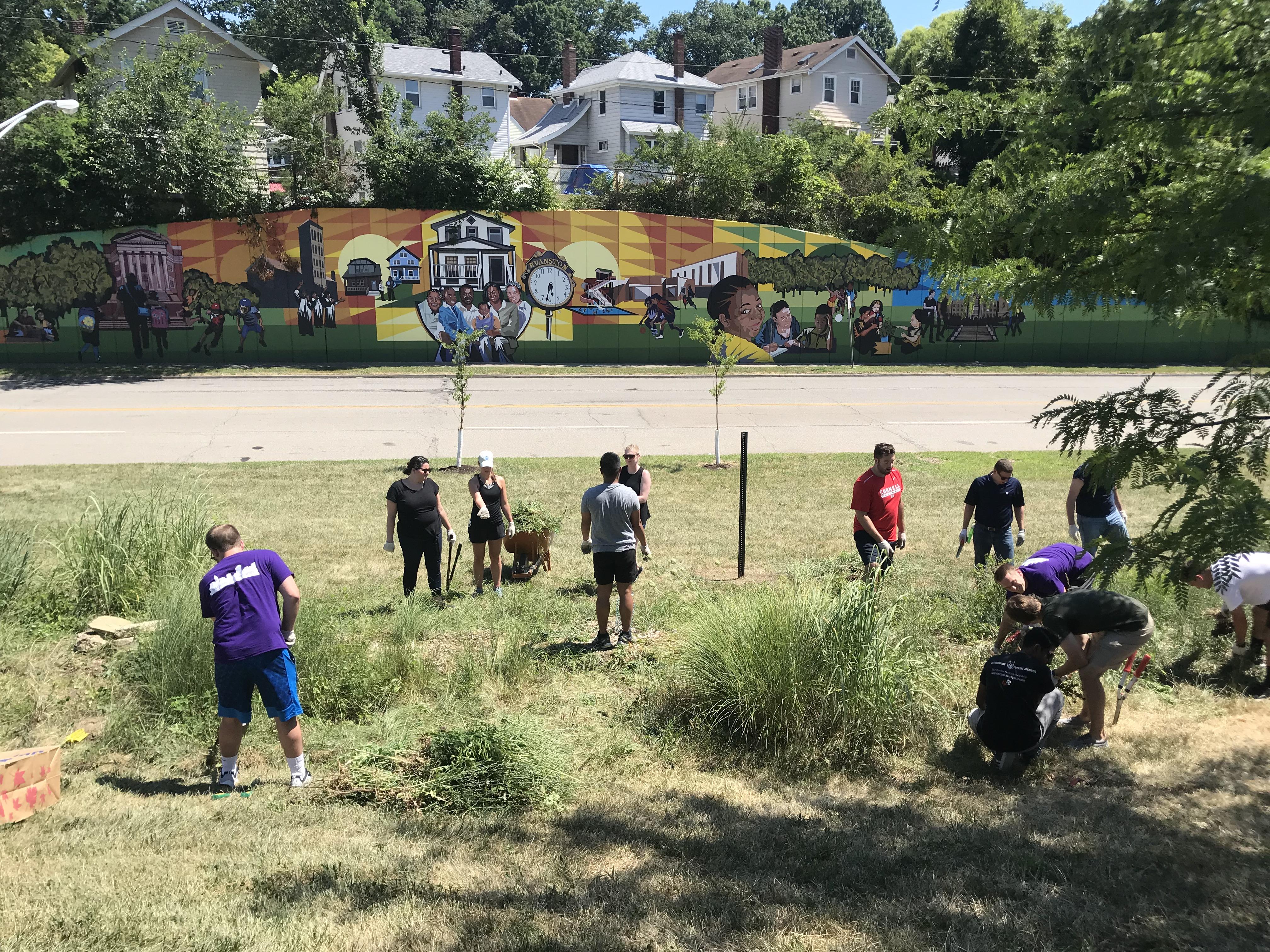 Neighborhood Spotlight: Evanston