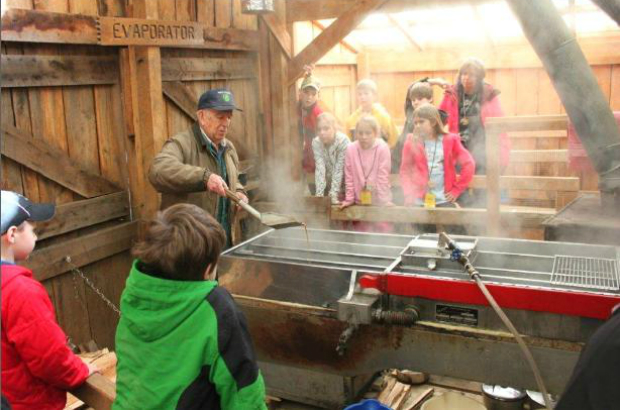 Experience Maple Sugaring