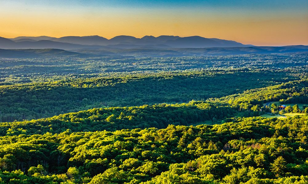 Mohonk Preserve Golden Hour by Steven Aaron
