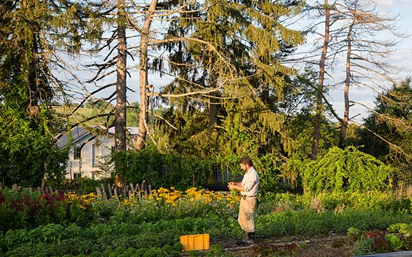 Agroforestry: Glynwood's Examination of Landscape Function