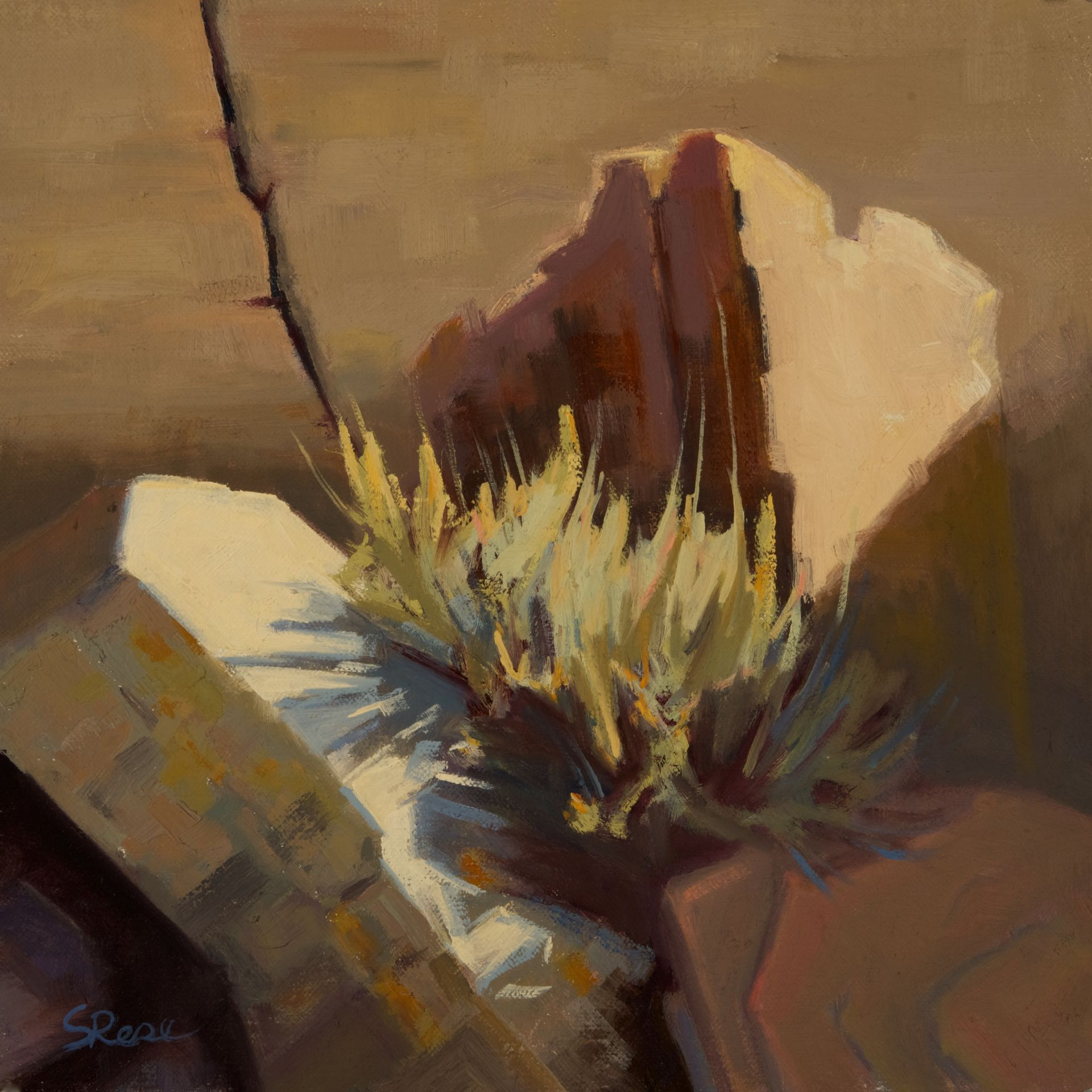 Mindful Observations, Paintings by Dorci Newman-Tremblay and Stephanie Rose