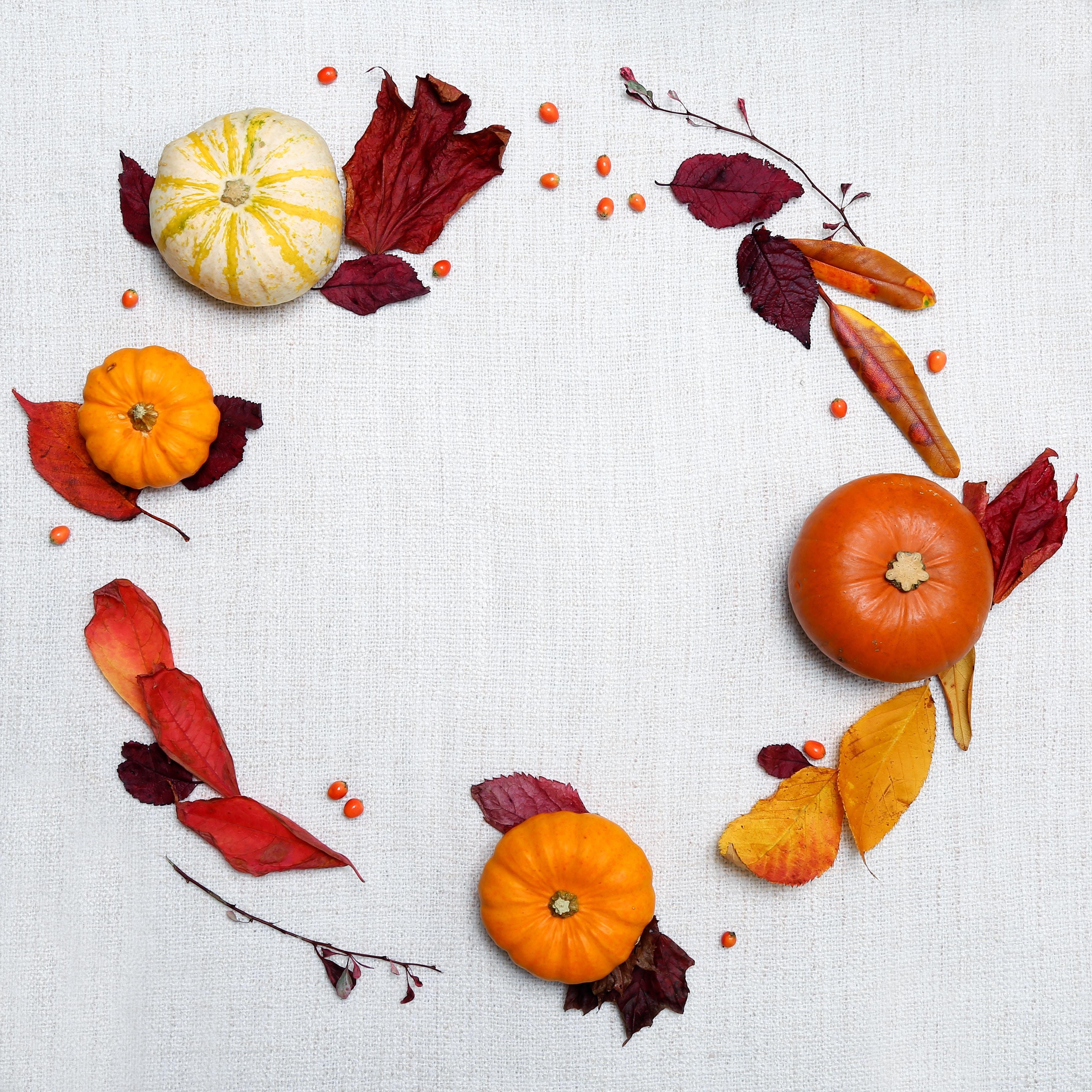 Join us for Thanksgiving dinner.