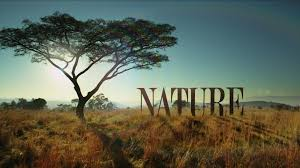 PBS Nature selects SRT for national TV program