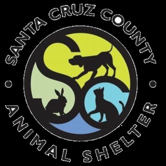 Santa Cruz County Animal Shelter offering FREE Shelter Tours to CASA