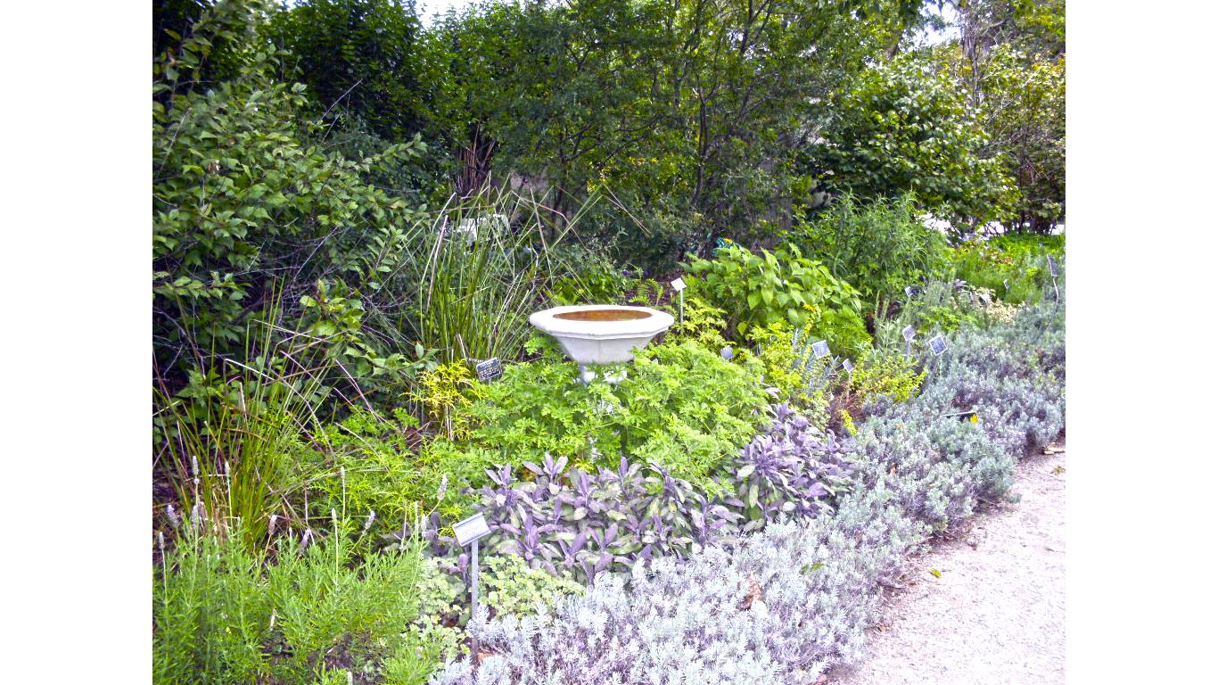 Wisconsin Garden Birdbath