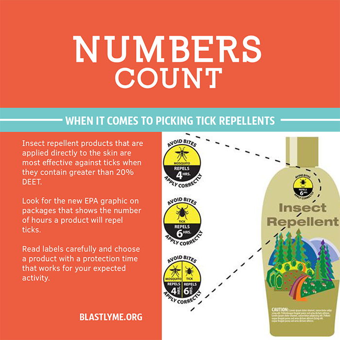 Numbers Count Prevention promotion