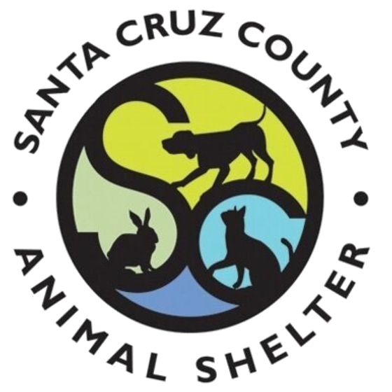 Santa Cruz County Animal Shelter offering FREE Shelter Tours to CASA