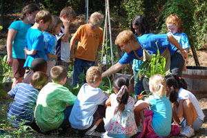 Summer Camp: Construction in Nature Grades 2-4