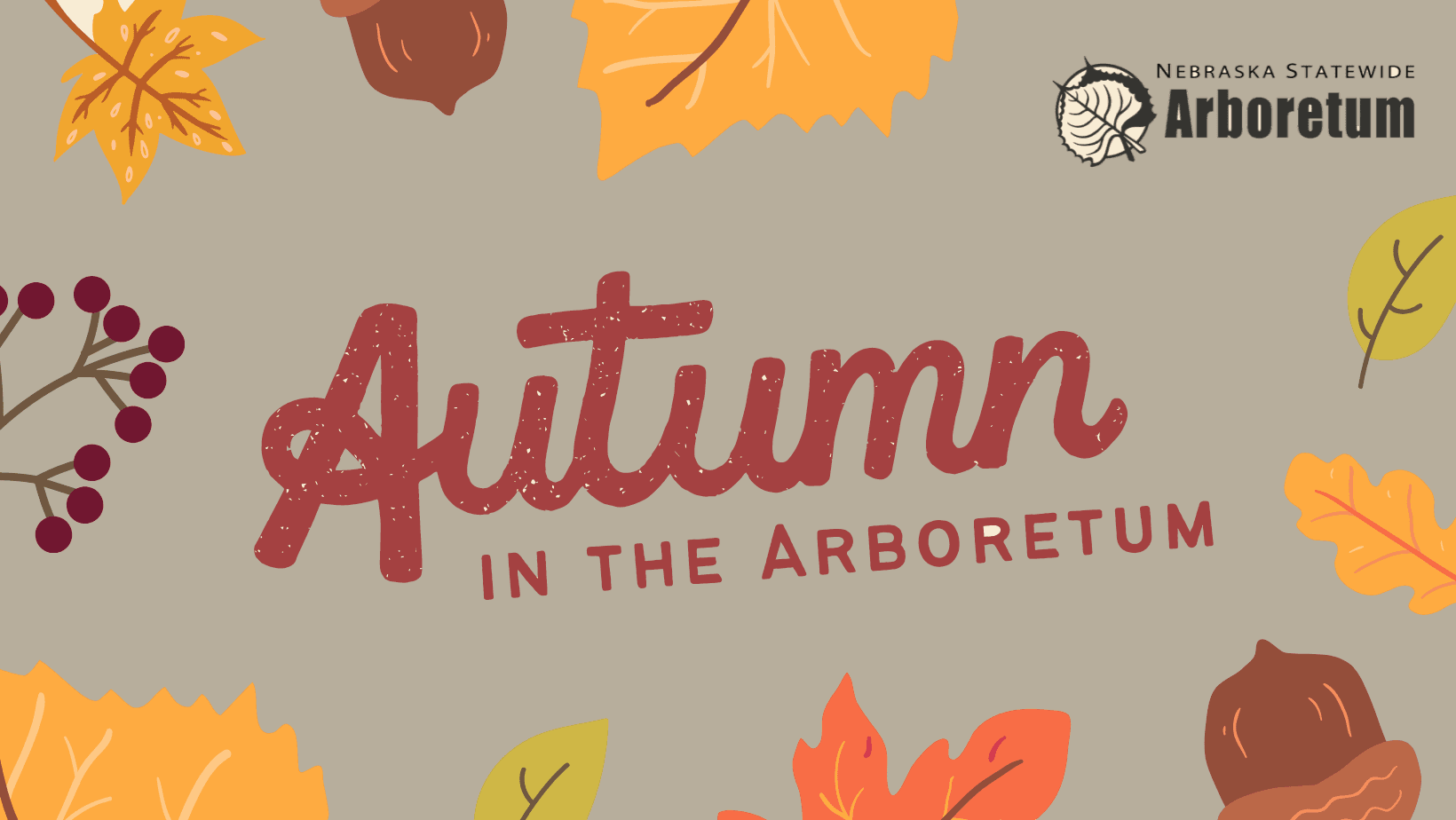 Autumn in the Arboretum