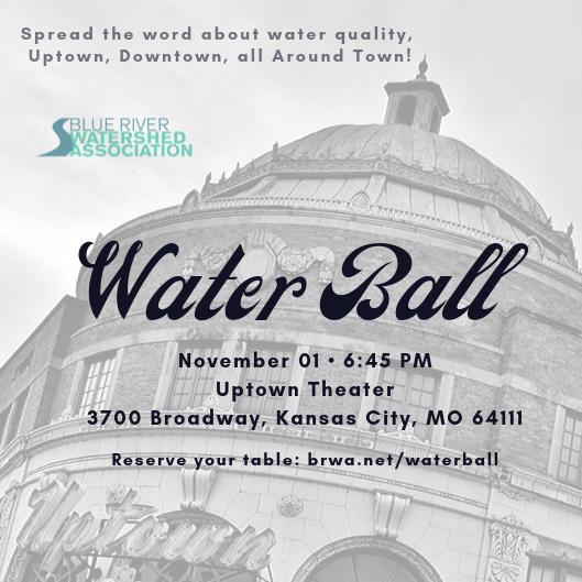 Water Ball 2019