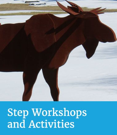 Step Workshops and Activities