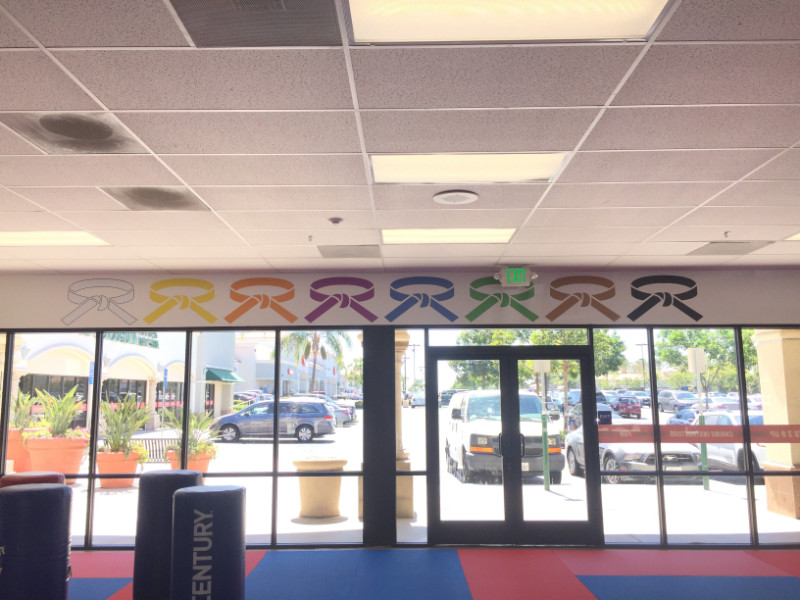 Wall and Window Graphics for Martial Arts Studios