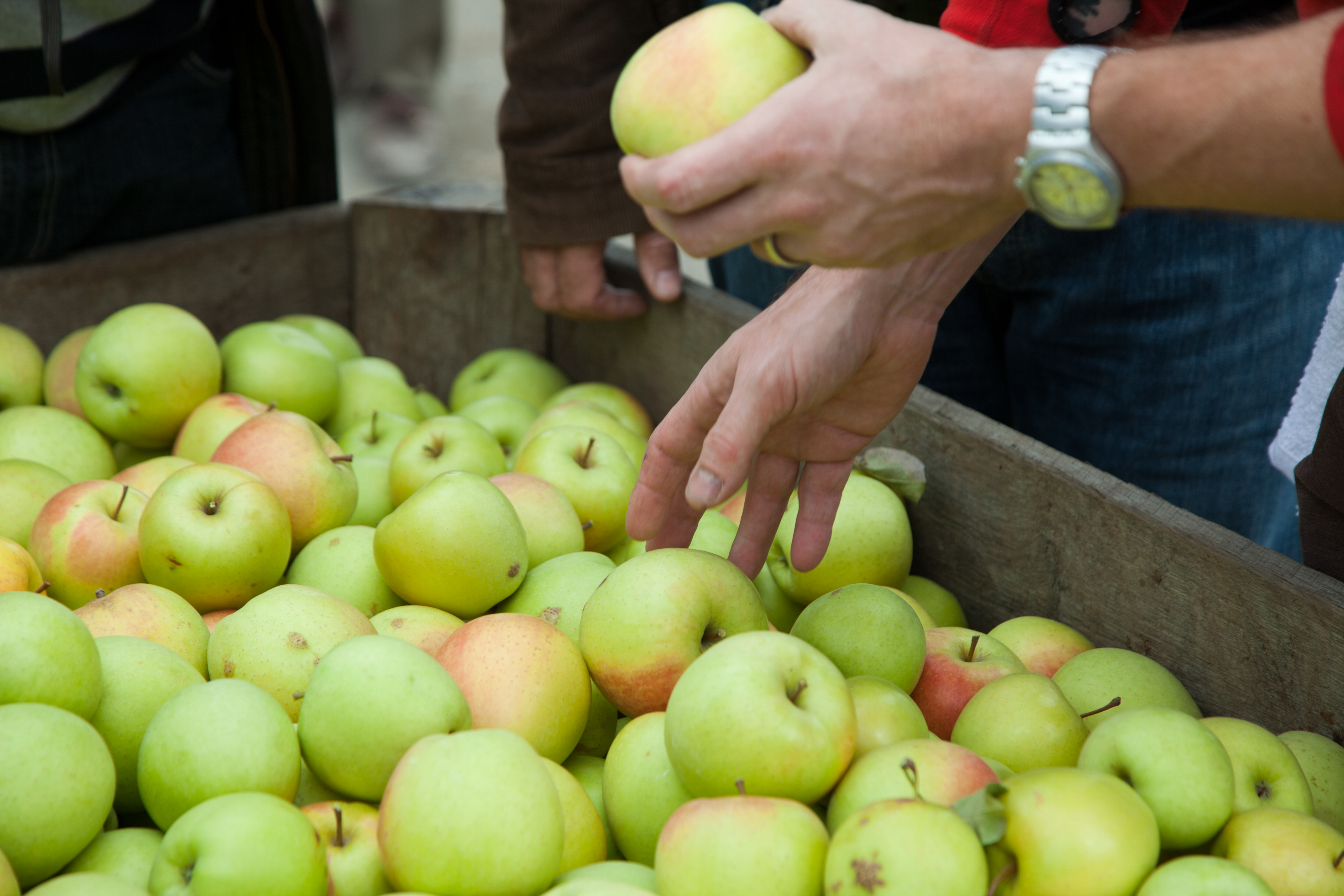 Glynwood Hosts Advanced Sensory Training for Cider Producers