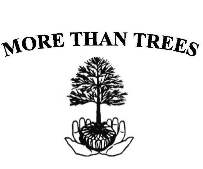 More Than Trees