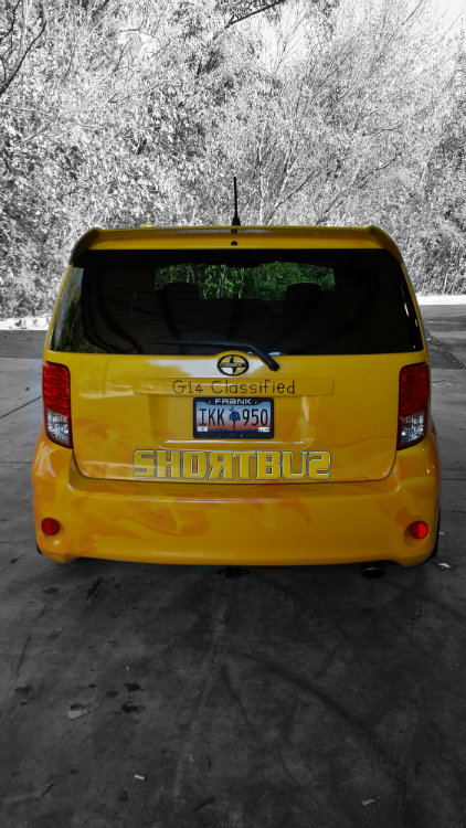 Shortbus Rear
