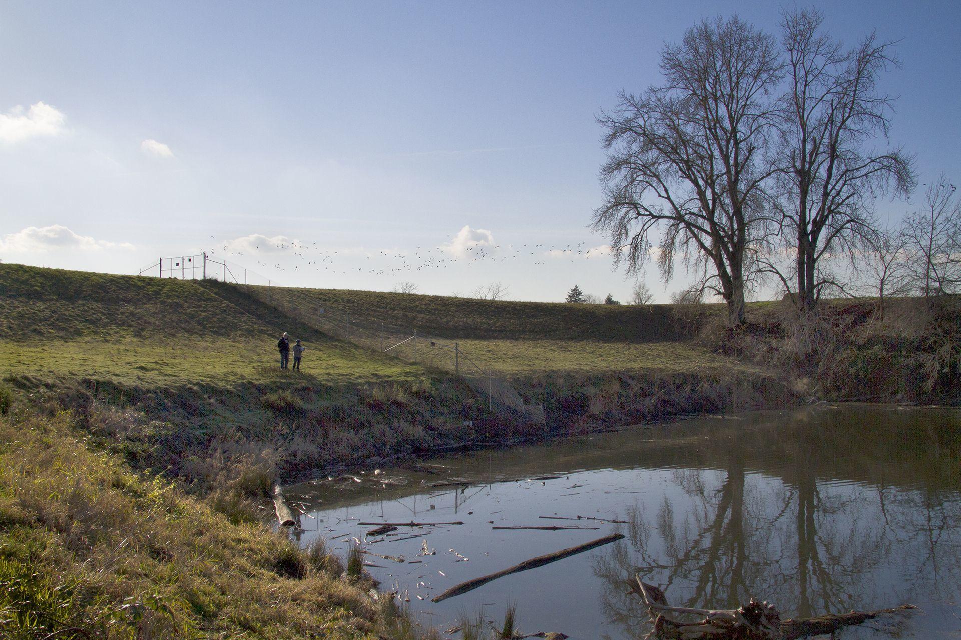 Bottom Of The Peninsula Drainage Canal