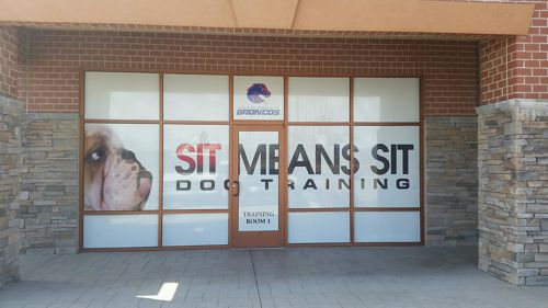 Sit Means Sit Dog Training