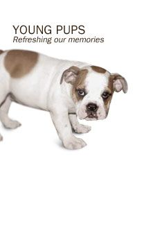 Young pups: Refreshing our memories