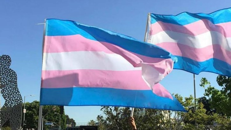 Transgender Illegal Aliens Get Special Treatment, Hormone Therapy Under Policy Issued by Trump's Border Czar
