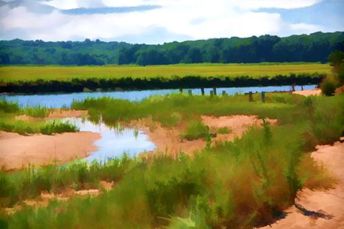 Crab Meadow