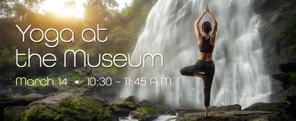 POSTPONED: Yoga at the Museum