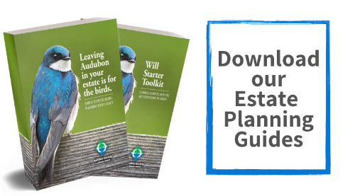 Estate Planning Guide and Will Starter Toolkit: Leave Audubon Society of Rhode Island in your will