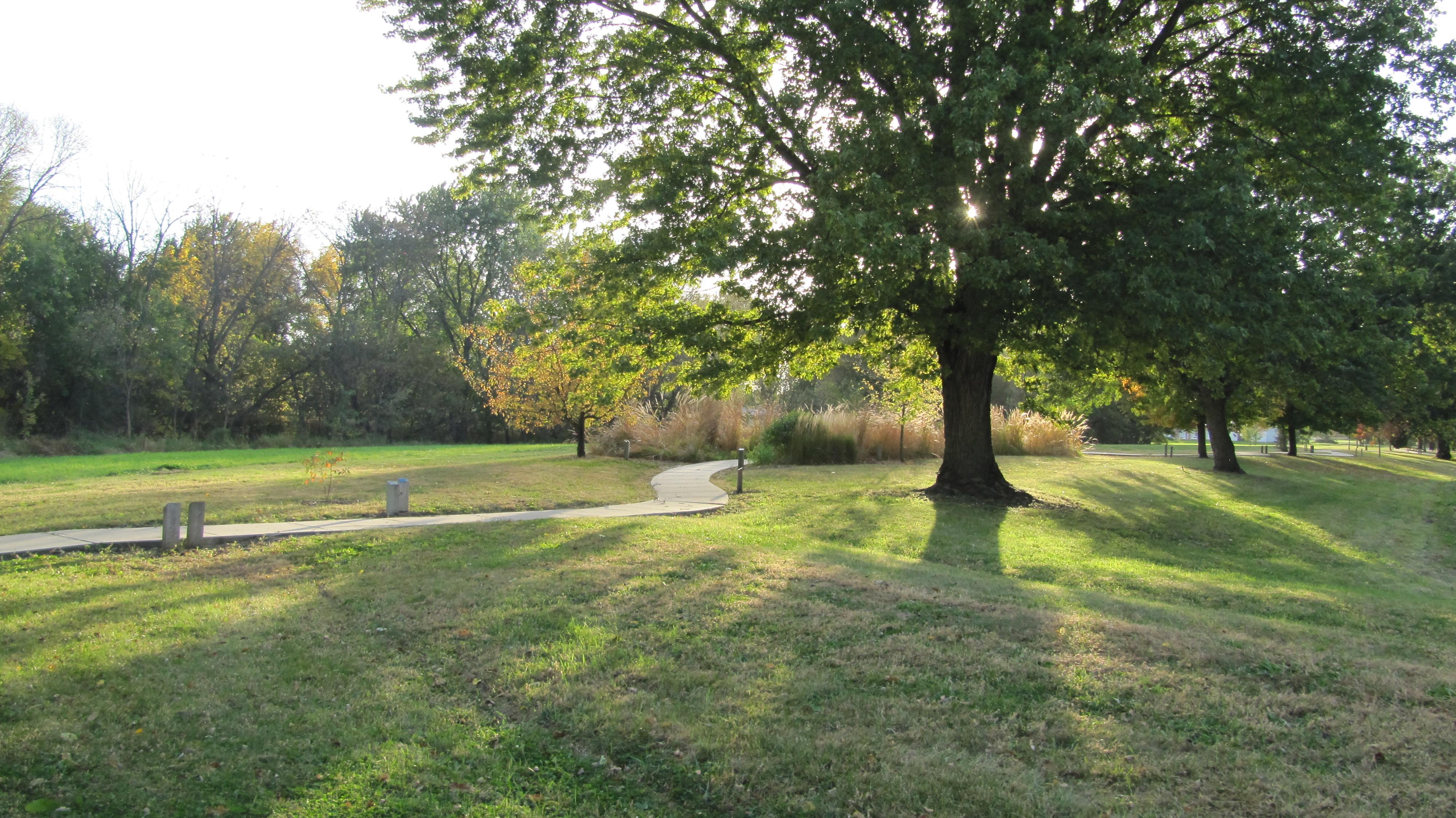 Go on an Arboretum Adventure this summer!