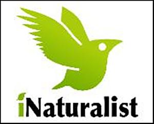 CNC: I-Naturalist as a Land Survey Tool Class