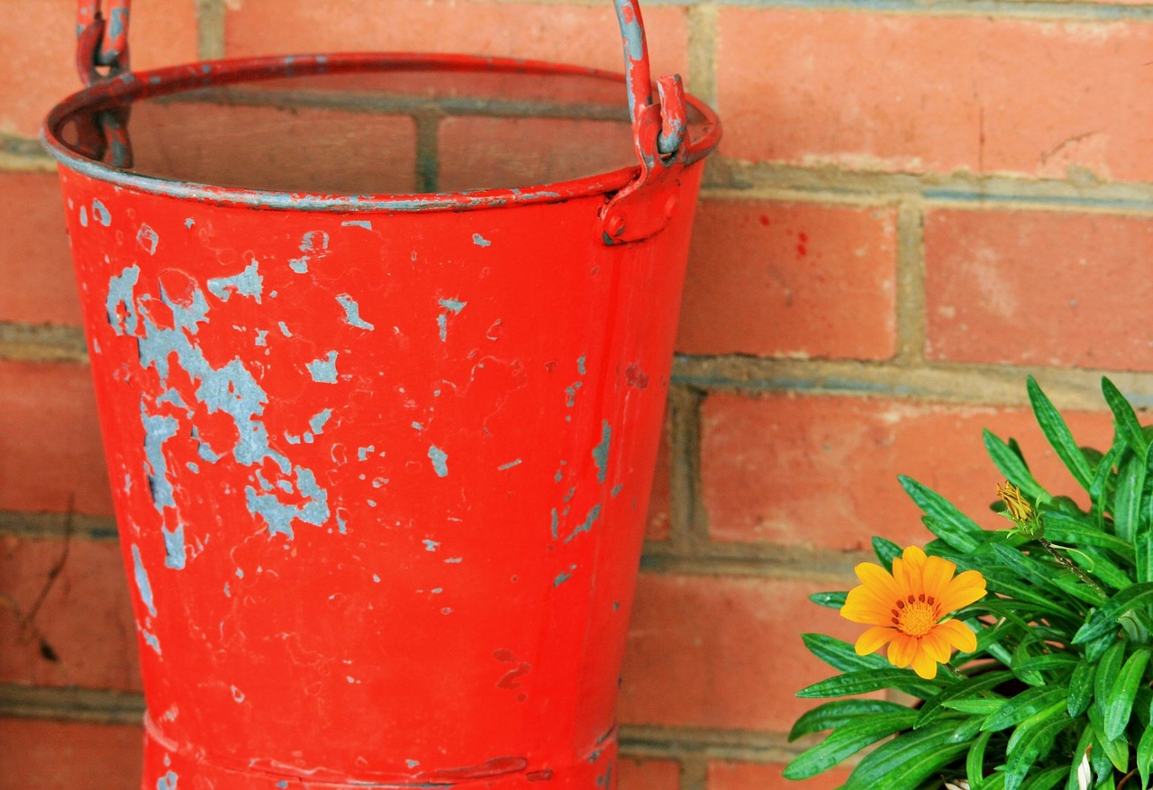 7 Simple Ways You Can Conserve Water in Your Eco-Friendly Yard