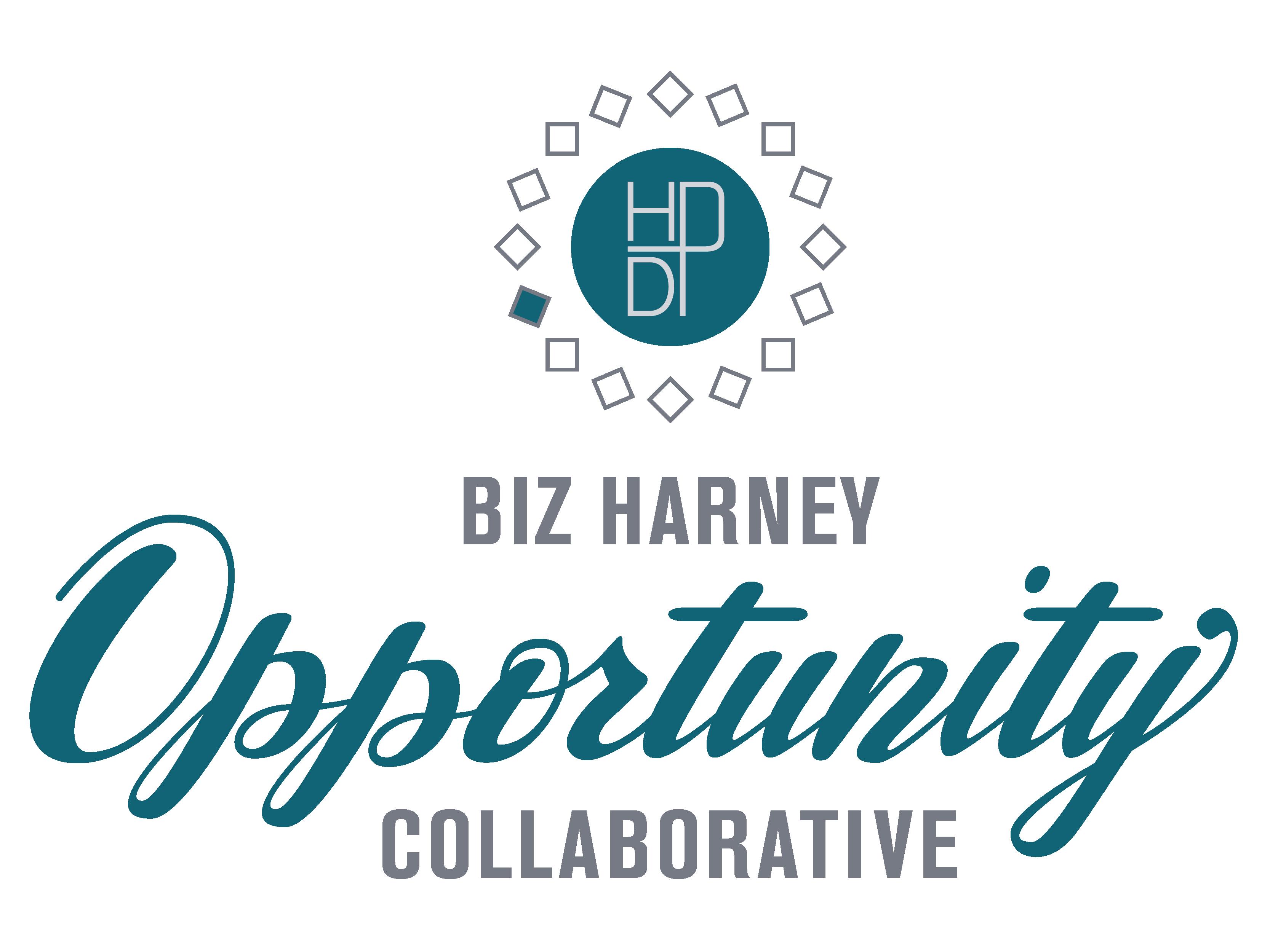 HDP BizHarney Collaborative