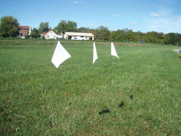 Marking Flags (white)