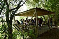 Smith Oaks Rookery Visitors