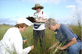 Prairie Vegetation Survey