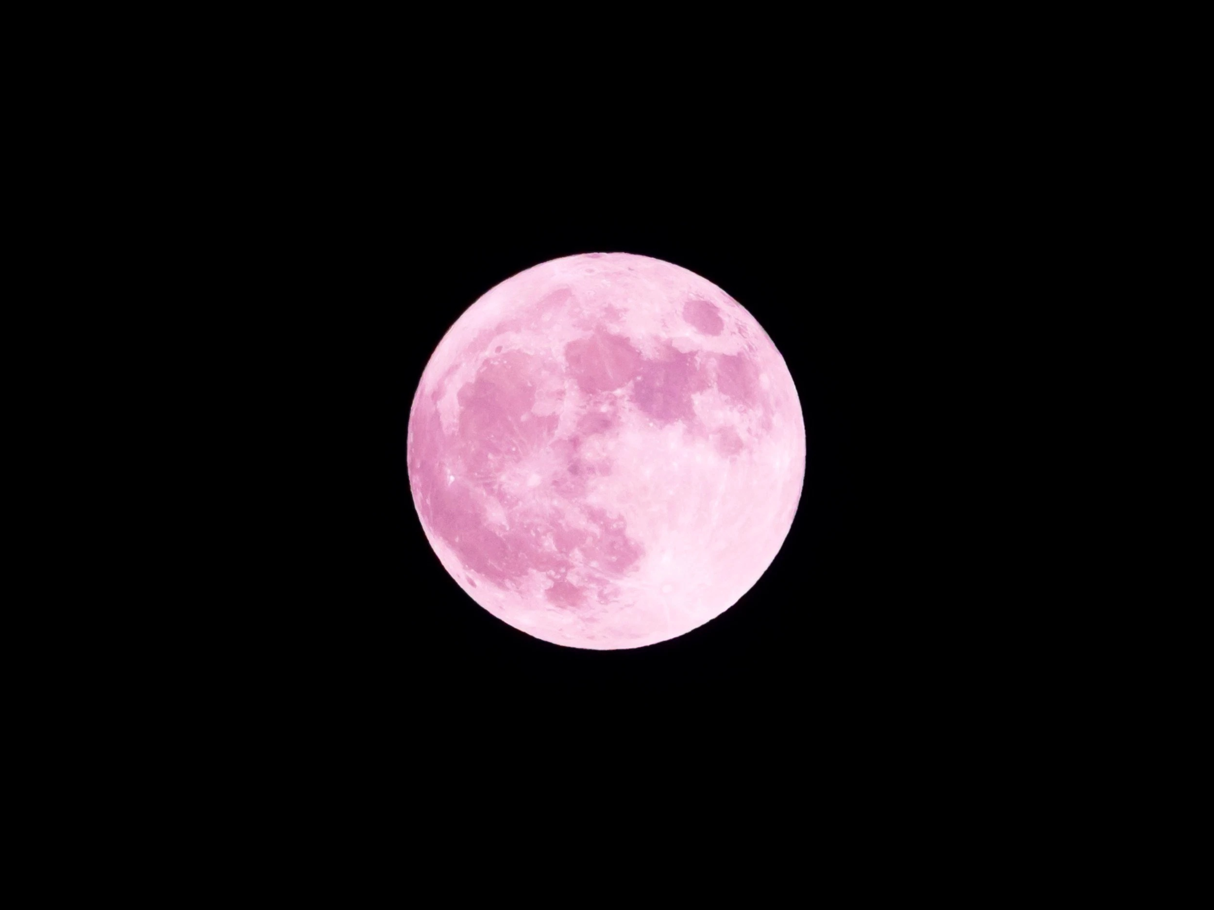 So, the moon may not really be pink but its rare beauty is a refreshing time to start over!