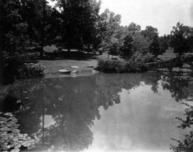 Fish pond in summer, ca. 1933