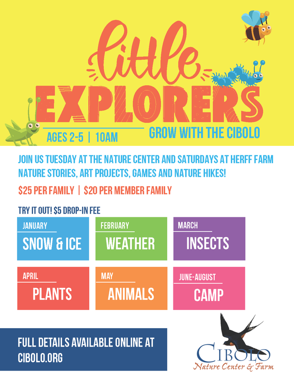 Postponed until further notice: Little Explorers - Bugs and Creepy Crawlers