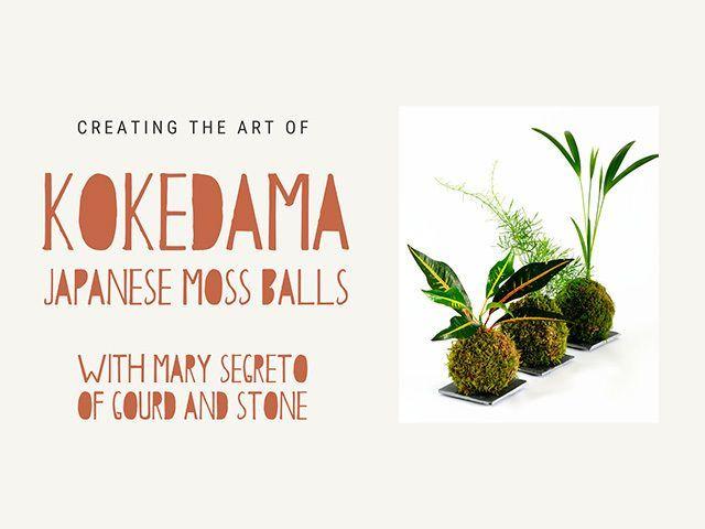 Kokedama - Japanese Moss Balls