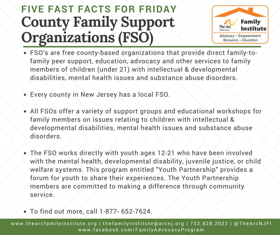 County Family Support Organizations (FSO)