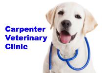 Carpenter Veterinary Hospital, PLLC