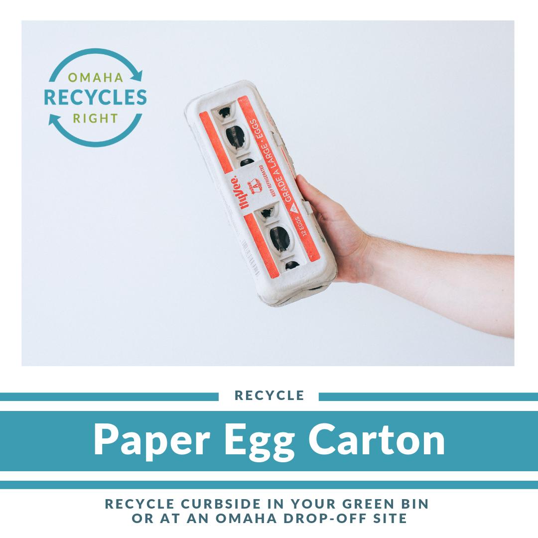 Paper Egg Carton