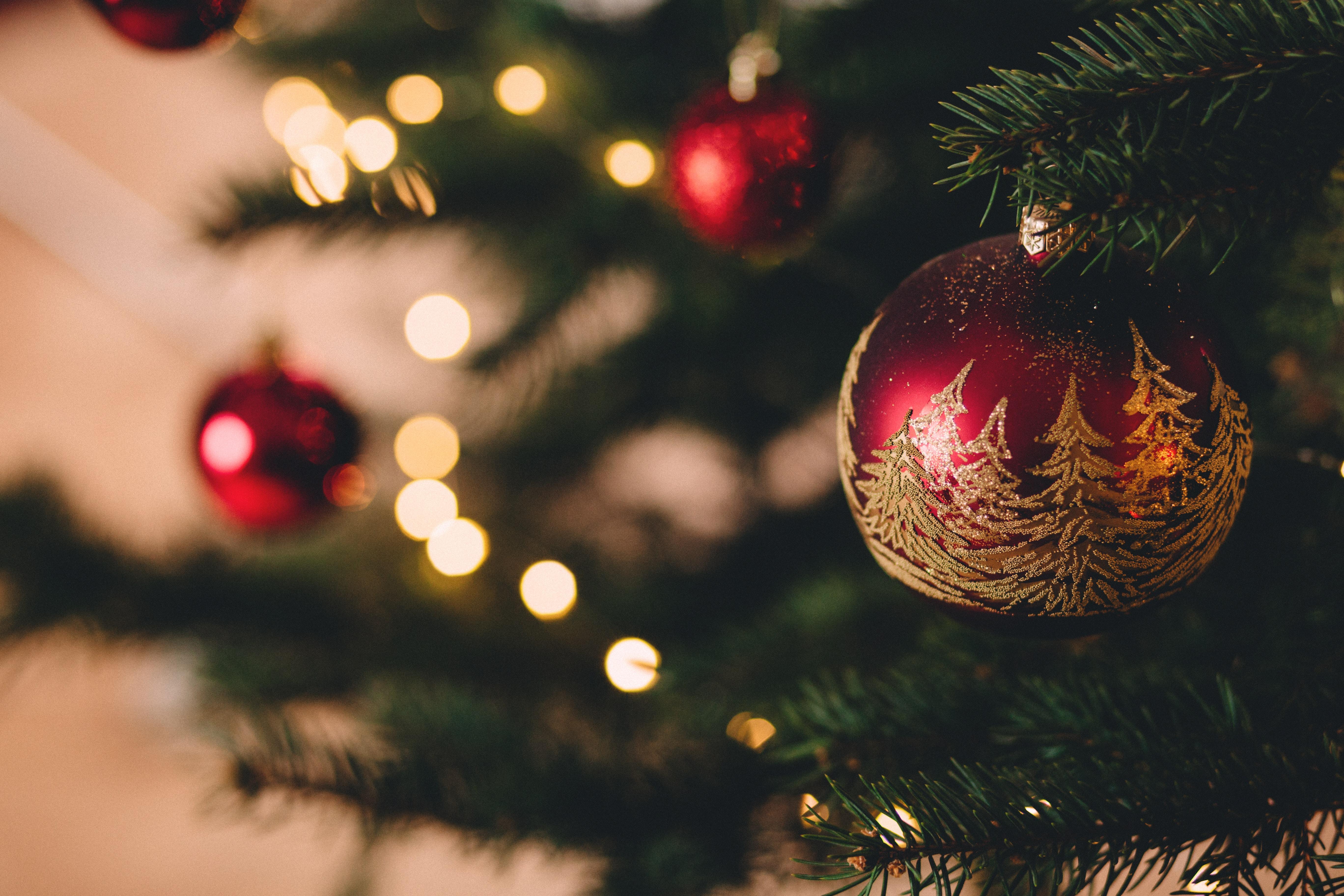 Christmas at Care Lodge