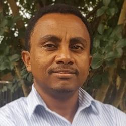 Mr. Daniel Mekibib