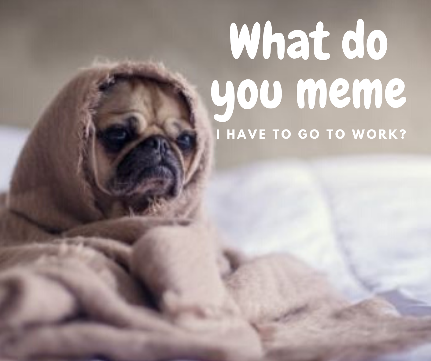 Merging Memes into Your Marketing