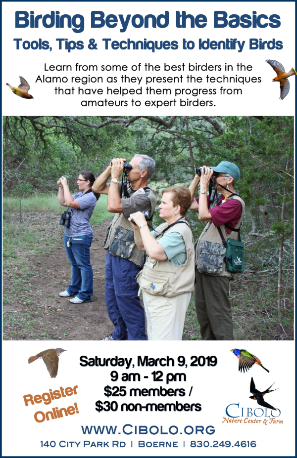 CNC: Birding Beyond the Basics