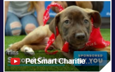 SBF in PetSmart Charities Ad