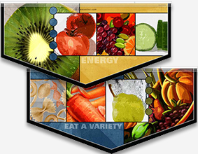 Hybrid Food Art Banners