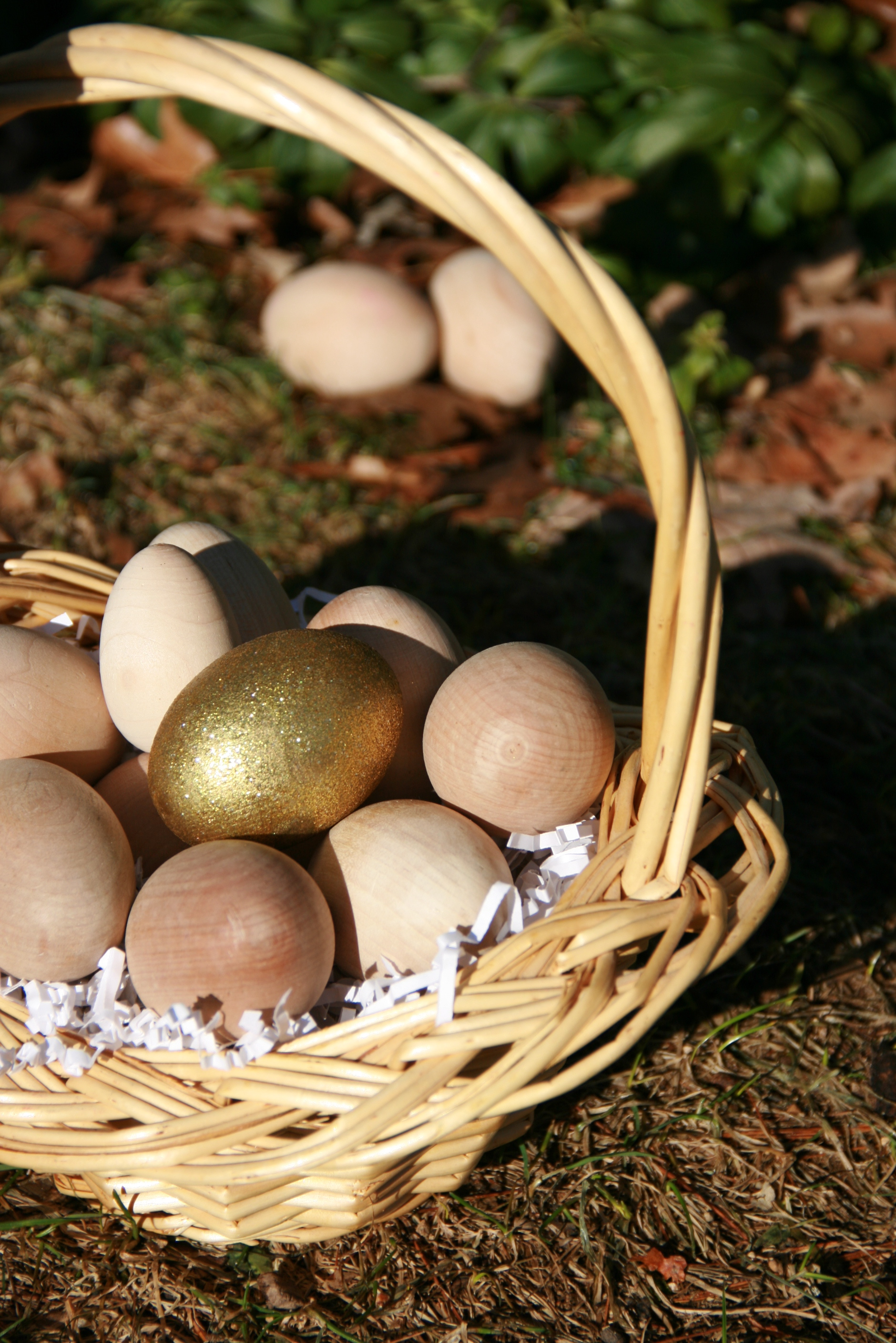 Camouflaged Egg Hunt this Saturday