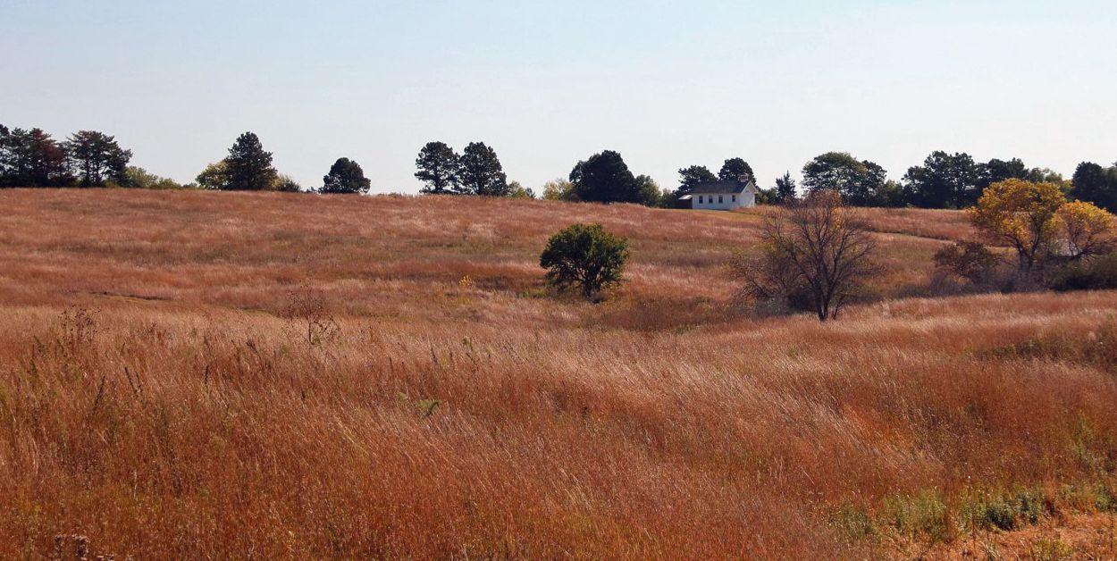 Martin Prairie