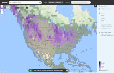 Ebird online map